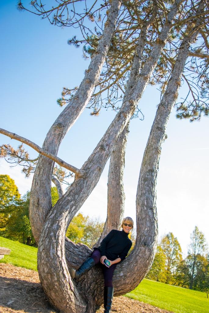 Timothy Pate Landscape Arboretum