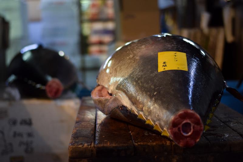 japan_body_fishmarket