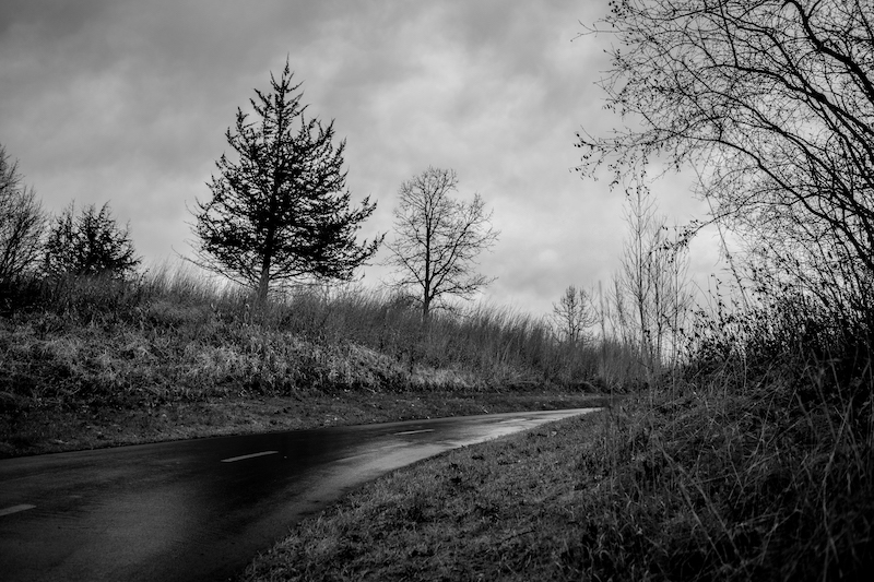 Long and Winding Roads (andTrails)